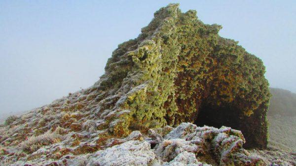 cueva-pali-aike-1