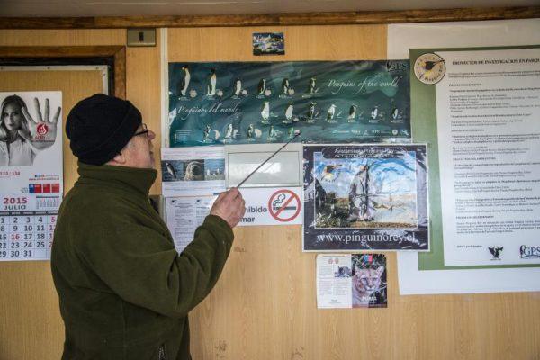 informativos-parque-pinguino-rey
